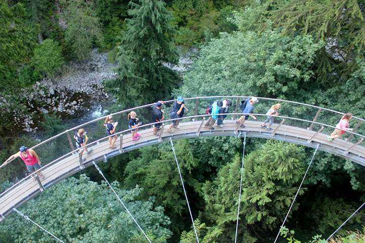 Best of Vancouver Highlights /Suspension Bridge Tour (Private) 2 Guest +