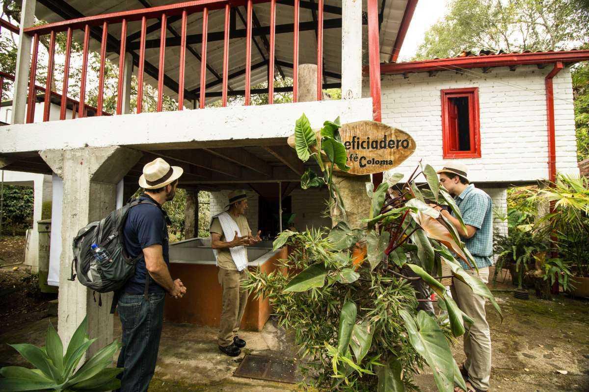 Coffee Farm Experience near Bogota at Coloma