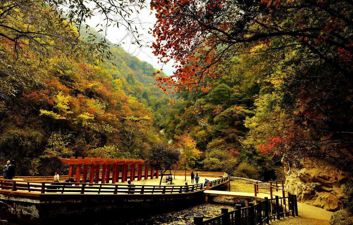 1-Day Xian Day Tour for Maple Leaves and Glass Bridge at Mt. Shaohuashan