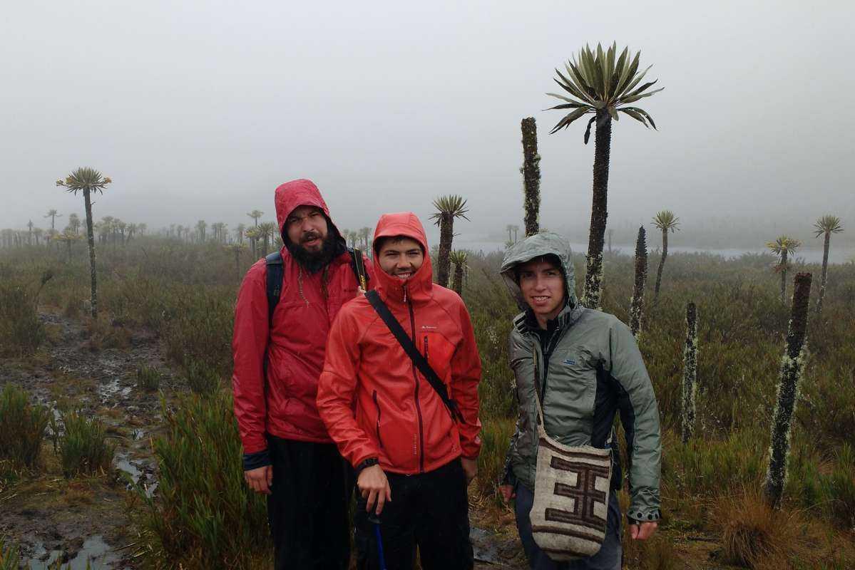 Chingaza National Park Hiking Tour w/ English Guide