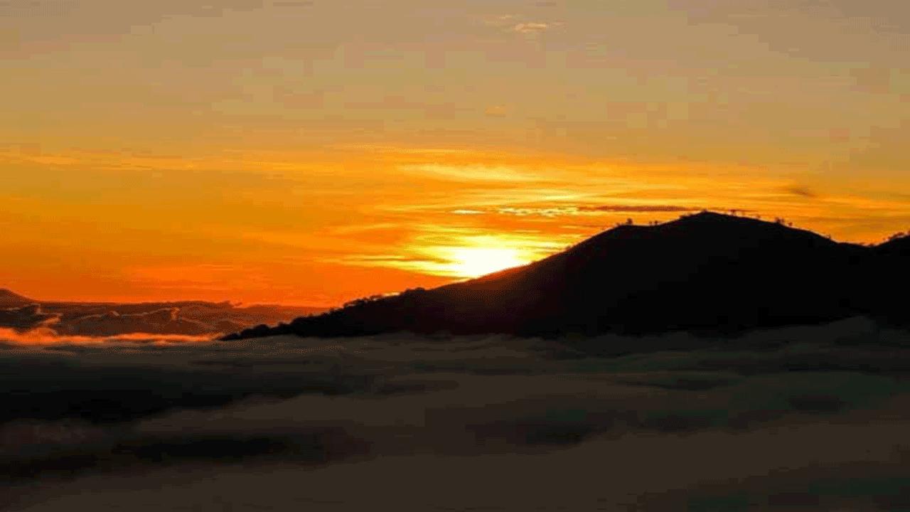Bali Mount Batur Sunrise Trekking and Coffe Platantion